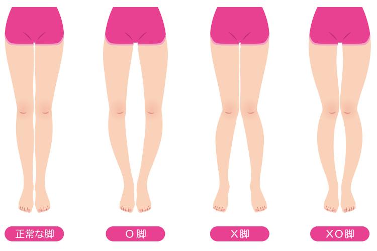 女性の脚のイラスト